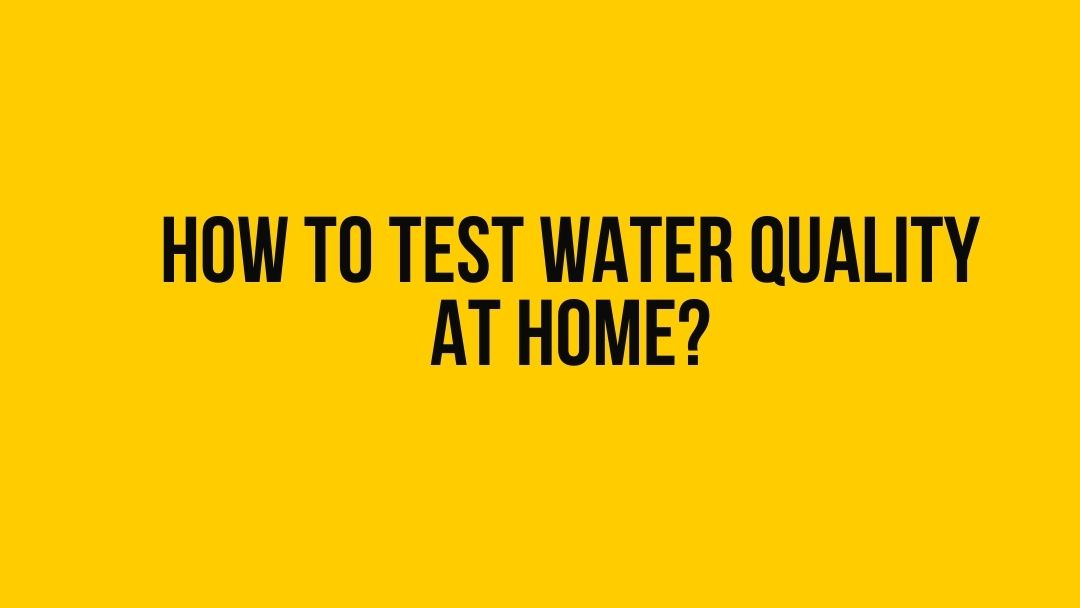 How To Test Water Quality At Home? 2